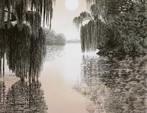 """WEEPING REFLECTIONS"""