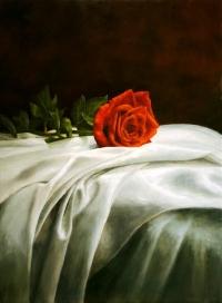 DRAPED ROSE