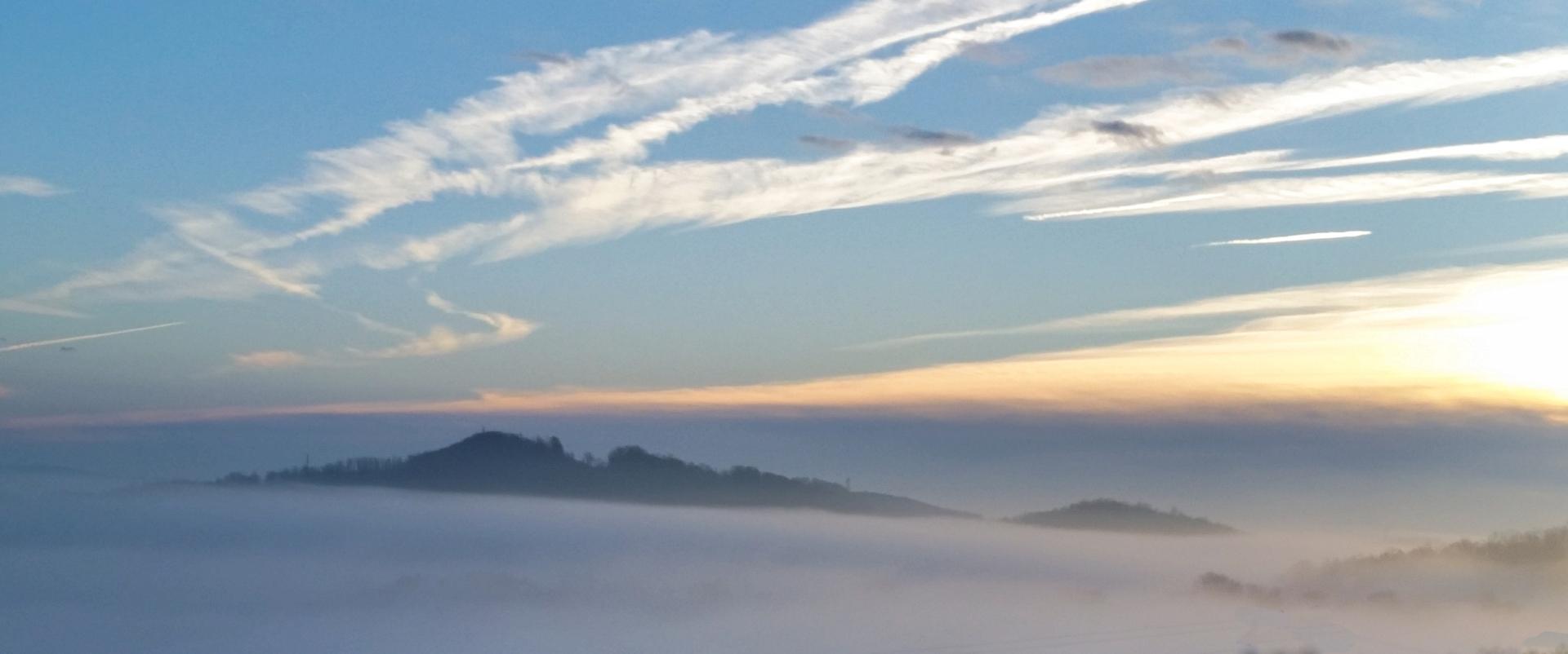 Fog_2.8.2017-4