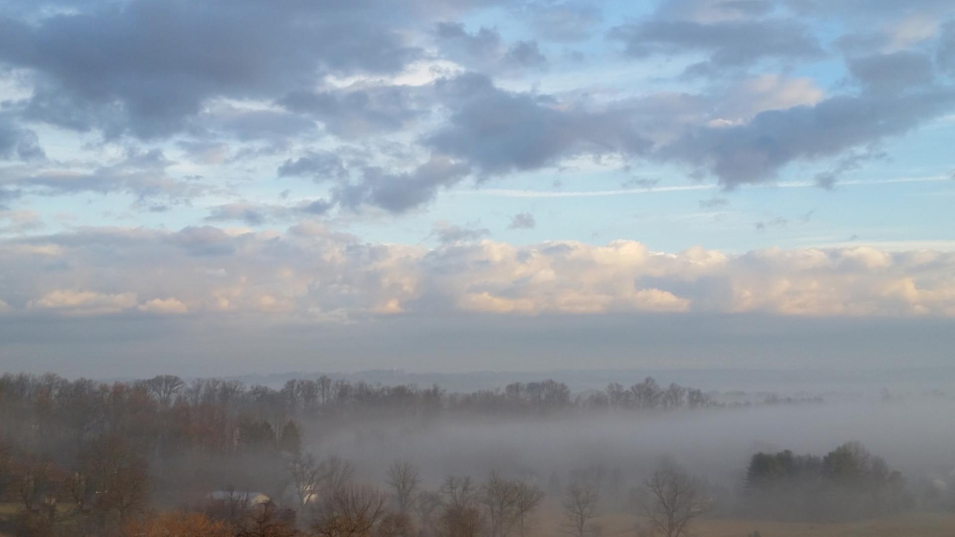Fog_2.8.2017-5
