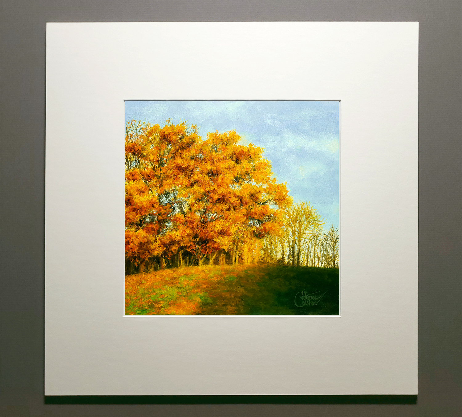 """""""SUNGLOW"""" MATTED"""